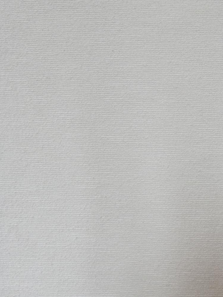 FLAMED VELVET - H36 000 RT