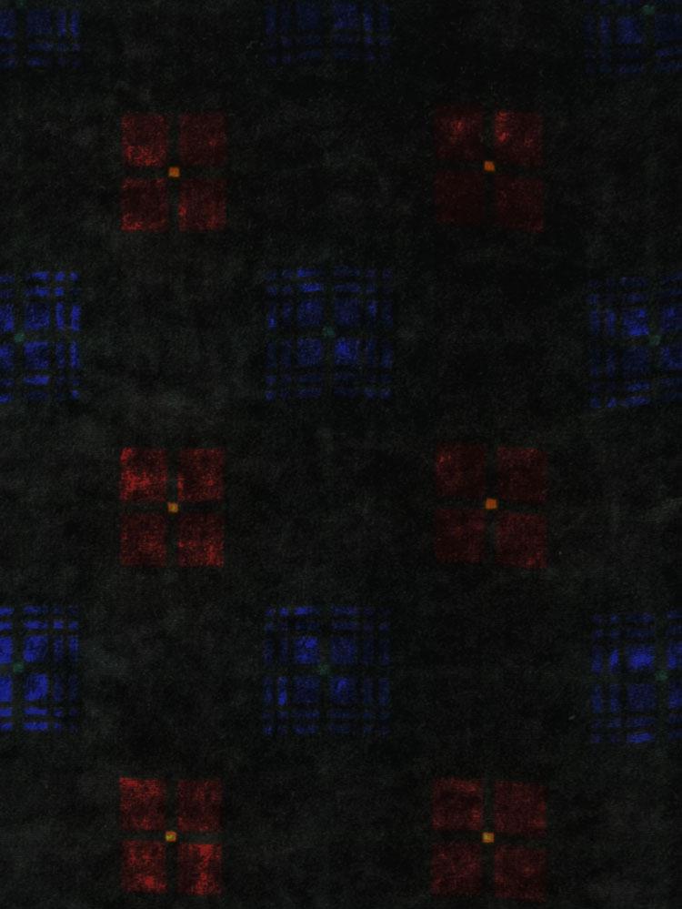 BLACK WATCH - L31 02D LV