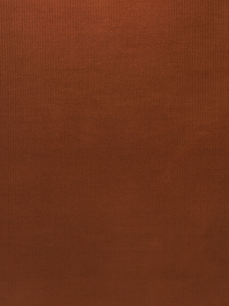 BABY CORDUROY - 482 000 A