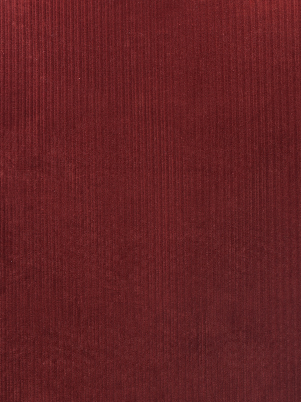 VELLUTI A COSTE FANTASIA - 261 000 A0
