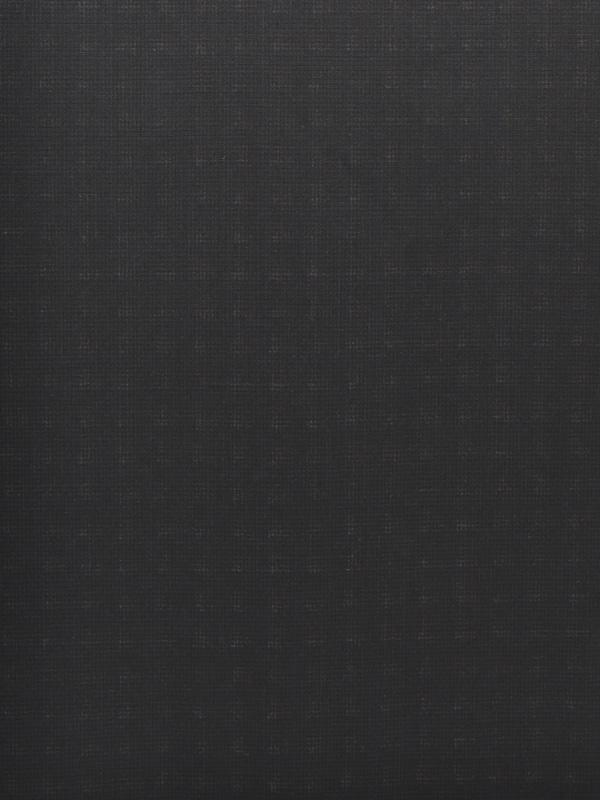 LANE LEGGERE - W67 Q91 C0