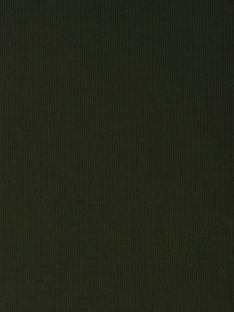 SOFT CORDUROY - 243 000 AP