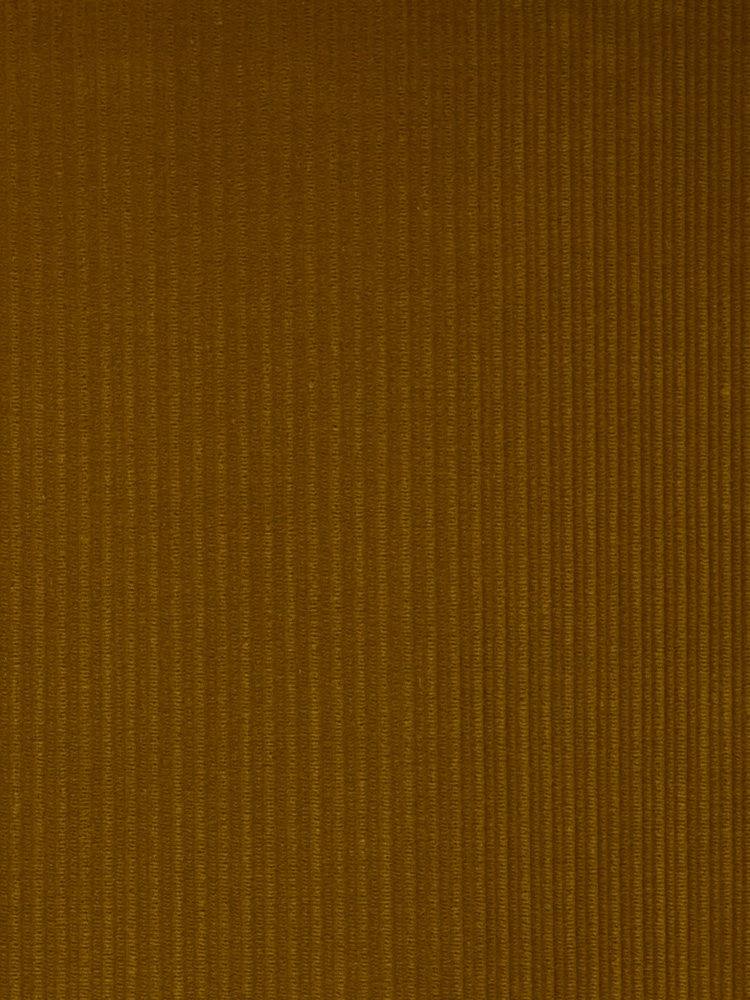 FRENCH CORDUROY - 501 000 A0