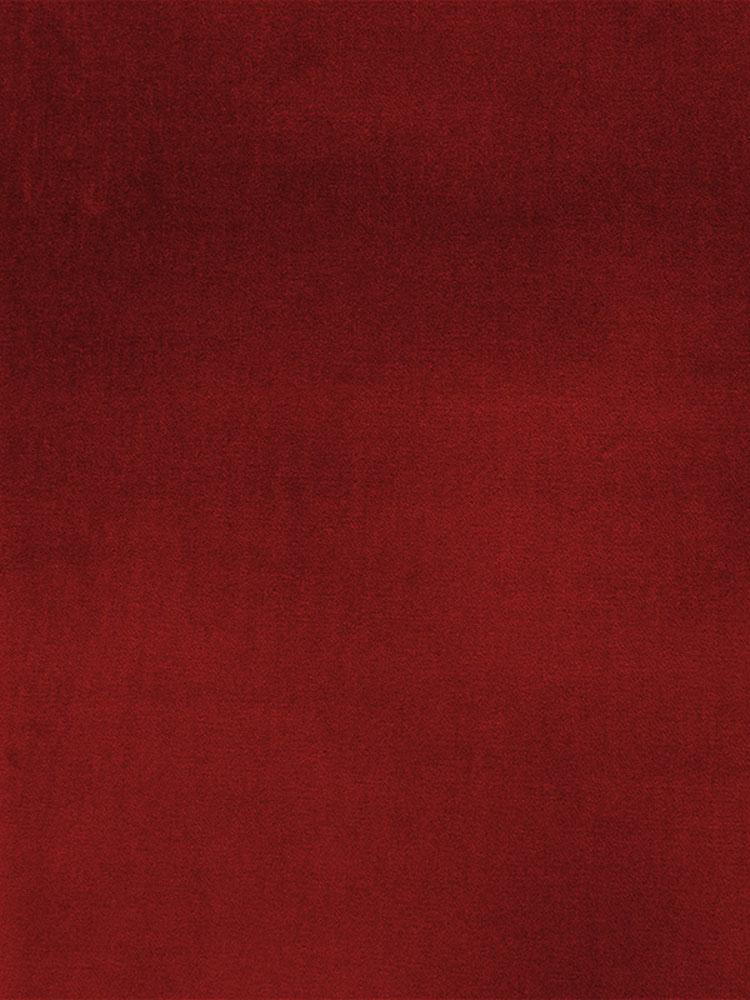 COTTON VELVET - 729 000 H0