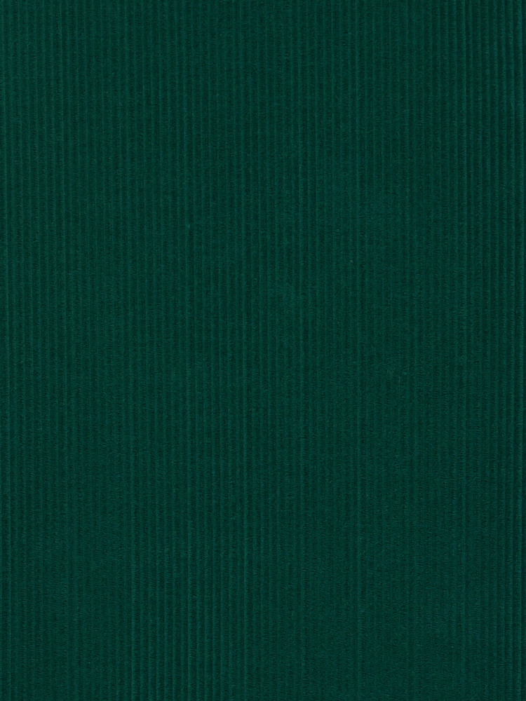 FRENCH CORDUROY - 262 000 A0