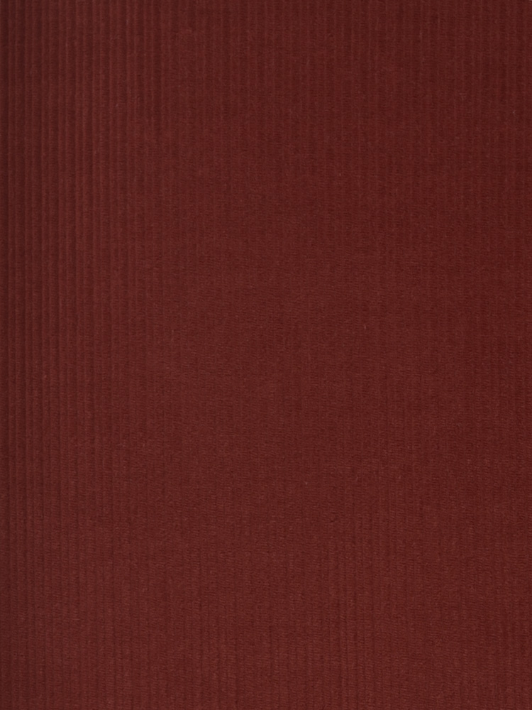 FRENCH CORDUROY - 261 000 A0V