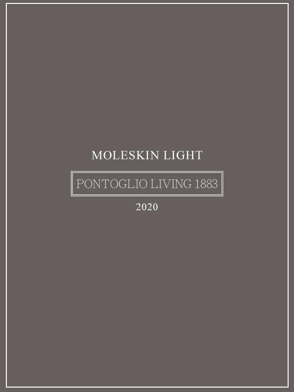 MOLESKIN LIGHT 2020