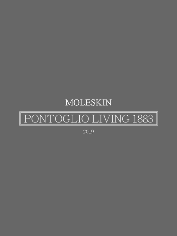 MOLESKIN LIGHT 2019