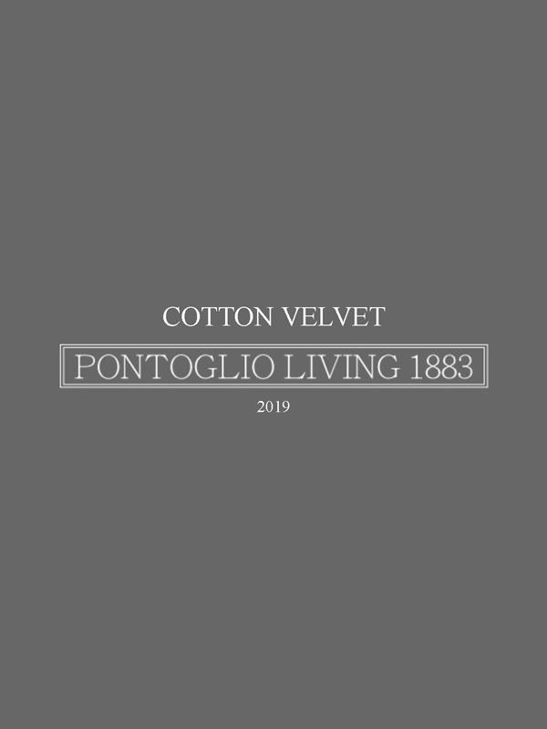 COTTON VELVET 2019