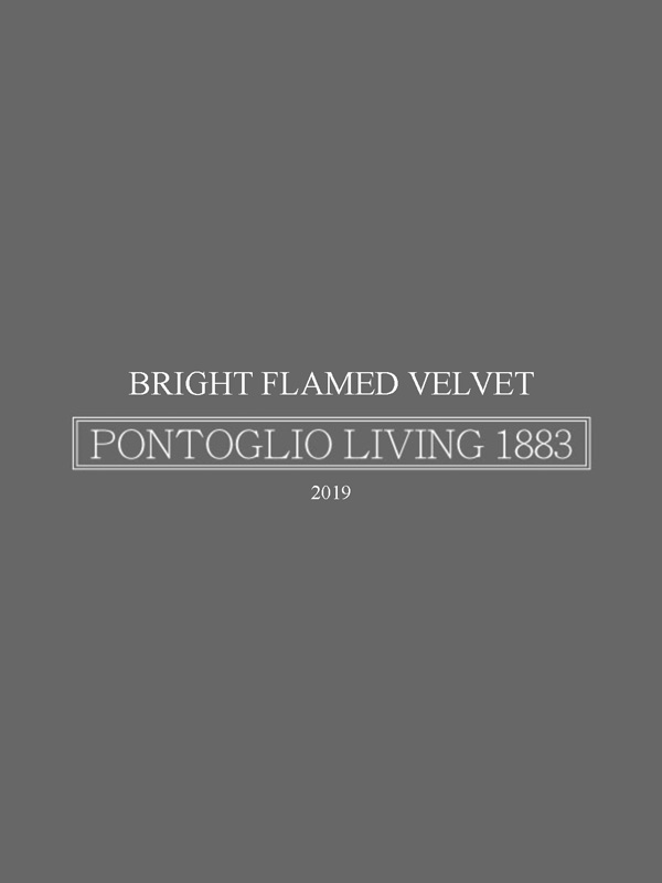 BRIGHT FLAMED VELVET 2019